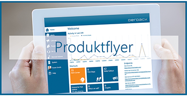 Enterprise Alert: Product Flyer